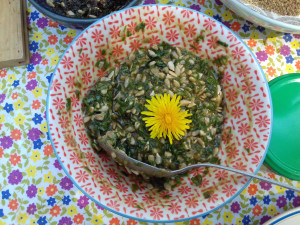 atelier cuisine avec les plantes sauvages