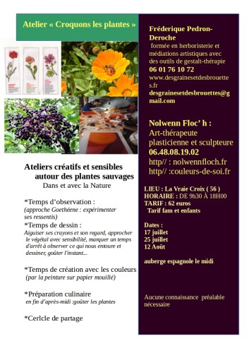"""""""Croquons les plantes""""  : Ateliers créatifs et sensibles autour des plantes sauvages"""