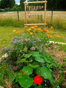Jardin école les Tournesols
