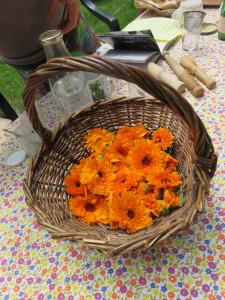 paniers de fleurs de calendula