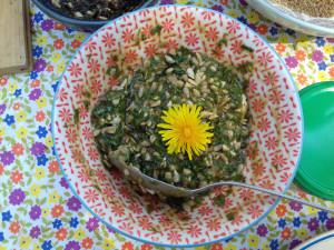 Pesto ortie-plantain et graines de tournesol