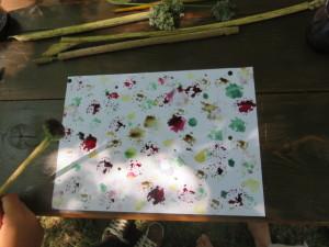 peindre avec la nature 2
